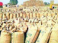 जिले में समर्थन मूल्य पर धान बेचने के लिए जिले भर में 35 हजार 511 किसानों ने कराया पंजीयन|होशंगाबाद,Hoshangabad - Money Bhaskar