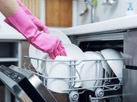 ડિશવોશર સાફ કરવા સોફ્ટ બ્રશનો ઉપયોગ કરો, તેના ફ્રન્ટ પેનલ ફિનિશ પ્રમાણે ક્લીનિંગ પ્રોડક્ટ ખરીદો લાઇફસ્ટાઇલ,Lifestyle - Divya Bhaskar