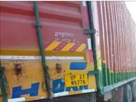 पुलिस ने रोका कंटेनर तभी चालक वाहन छोड़कर भागा, वाहन के अंदर पांच बैल मृत मिले, 09 बैलों को जिंदा किए बरामद|भिंड,Bhind - Money Bhaskar