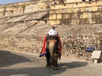 प्रदेश में 2677 नए पॉजिटिव मिले, जयपुर में सबसे ज्यादा 745; 20 लोगों ने संक्रमण से दम तोड़ा|जयपुर,Jaipur - Dainik Bhaskar