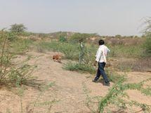 लड़की भगाने का विवाद सुझलाने आए थे, साथ में शराब पी, खाना खाया; फिर कहासुनी हुई और धारदार हथियारों से 3 को मार डाला|कोटा,Kota - Dainik Bhaskar