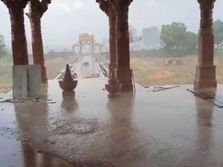 કચ્છ જિલ્લામાં કમોસમી વરસાદનો સિલસિલો યથાવત, કચ્છી કેરીના પાકને નુકસાનની ભીતિ|ભુજ,Bhuj - Divya Bhaskar