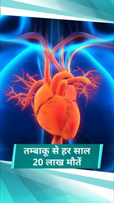 दुनिया में हर साल 20 लाख लोगों की मौत तम्बाकू से होने वाले हृदय रोगों से हो रही, एक्सपर्ट से जानिए दिल को दुरुस्त रखने के 10 आसान टिप्स