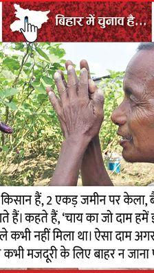 किसान कहते हैं- बंगाल में चाय उगाने को पम्प-बिजली मुफ्त मिलती है, बिहार सरकार कुछ नहीं करती