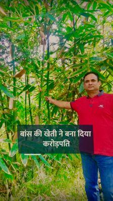 कभी दो हजार रुपए महीने की नौकरी करते थे, अब बांस की खेती से सालाना टर्नओवर एक करोड़ रुपए से ज्यादा