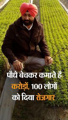 खेती छोड़ सब्जियों की नर्सरी तैयार की, हर साल 8 करोड़ बीज का प्रोडक्शन; अब MP-राजस्थान के साथ इटली में भी सप्लाई
