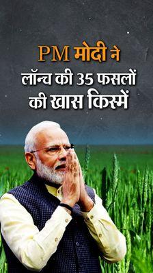 प्रधानमंत्री मोदी ने 35 फसलों की खास किस्में लॉन्च कीं, इन पर जलवायु परिवर्तन और कुपोषण का असर कम होगा