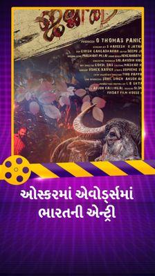 મલયાલમ ફિલ્મ 'જલિકટ્ટુ' 93મા ઓસ્કર અવૉર્ડ્ઝમાં ભારતનું પ્રતિનિધિત્વ કરશે, છલાંગ, ગુલાબો સિતાબોને પાછળ રાખીને પસંદગી પામી