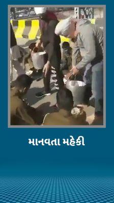 ખેડૂતો પર ડંડાવાળી કરનાર પોલીસ જવાનોને ભરપેટ જમાડાયા, હૃદયસ્પર્શી વીડિયો વાઇરલ