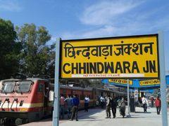हफ्ते में पांच दिन खुलेंगे सरकारी कार्यालय, आवश्यक चीजों के लिए रहेगी छूट|छिंदवाड़ा,Chhindwara - Dainik Bhaskar