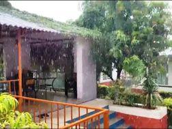 તાલાલા-સાસણ ગીર પંથકમાં કુદરતનો બેવડો માર, જૂનાગઢમાં કરા સાથે કમોસમી વરસાદ, 2.5ની તીવ્રતાના આંચકા|જુનાગઢ,Junagadh - Divya Bhaskar