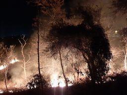 शहर का ऑक्सीजन केंद्र माने जाने वाले जंगल में लगी आग, दमकल ने चार घंटे की मशक्कत के बाद पाया आग पर काबू|बांसवाड़ा,Banswara - Dainik Bhaskar