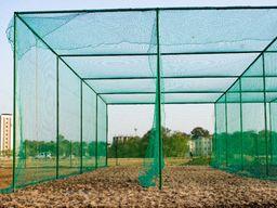 માહીના મિત્રએ અમદાવાદમાં લોન્ચ કરી એમએસ ધોની ક્રિકેટ એકેડમી, 8 ફેબ્રુઆરીથી શરૂ થશે ખેલાડીઓની ટ્રેનિંગ|ક્રિકેટ,Cricket - Divya Bhaskar