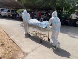 વલસાડ સિવિલમાં કોરોનાની સારવાર દરમિયાન મૃત્યુ પામનાર 3 વૃદ્ધ દર્દીનાં પરિવારજનોને શોધવા પોલીસની મદદ લેવાઈ|વલસાડ,Valsad - Divya Bhaskar