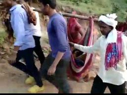 तामिया के घाना कोडिया गांव में नहीं सड़क, बीमार महिला को डोली में टांग कर पहुंचाया अस्पताल छिंदवाड़ा,Chhindwara - Money Bhaskar