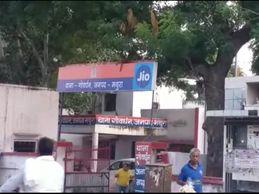 पुरानी रंजिश को लेकर दो पक्षों में चले लाठी-डंडे, झगड़े में महिलाओं सहित 5 लोग गंभीर रूप से घायल|मथुरा,Mathura - Money Bhaskar