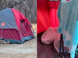 6 મહિનાથી મહિલા ગુમ હતી, પોલીસે તપાસ કરતાં યુટાહના જંગલોમાં ઘાસ અને પાણીના સહારે જીવતી મળી આવી|લાઇફસ્ટાઇલ,Lifestyle - Divya Bhaskar