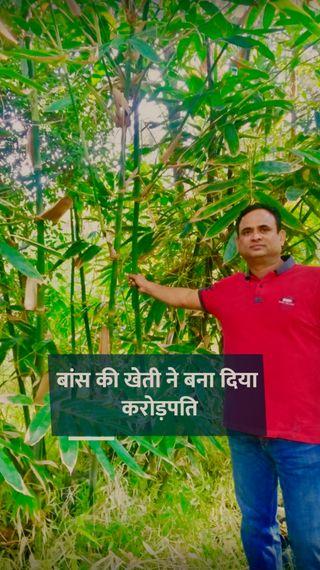 कभी दो हजार रुपए महीने की नौकरी करते थे, अब बांस की खेती से सालाना टर्नओवर एक करोड़ रुपए से ज्यादा - ओरिजिनल - Dainik Bhaskar