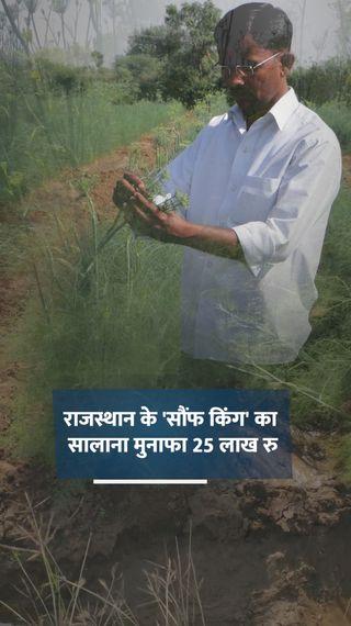 12वीं पास इशाक ने पारंपरिक खेती छोड़ सौंफ की खेती शुरू की, आज सालाना 25 लाख रुपए मुनाफा कमा रहे - ओरिजिनल - Dainik Bhaskar