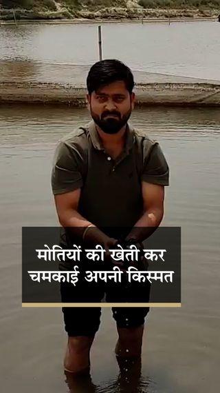 बिहार के नीतिल एक एकड़ जमीन पर मोती की खेती से कमा रहे हैं 30 लाख रुपए सालाना, जानिए आप कैसे कर सकते हैं शुरुआत? - ओरिजिनल - Dainik Bhaskar