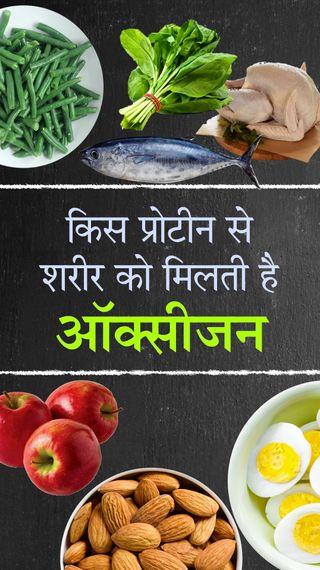 जानिए अपने खून में ऑक्सीजन बढ़ाने के लिए क्या-क्या खाएं; कौन सा प्रोटीन शरीर के सभी अंगों में ऑक्सीजन पहुंचाता है - ओरिजिनल - Dainik Bhaskar