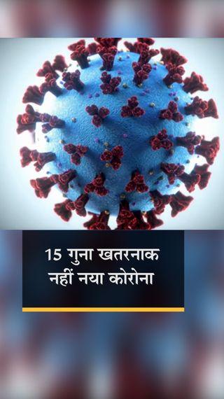 कोरोना संक्रमण में N440K स्ट्रेन 5% से भी कम, जल्द गायब हो जाएगा; नहीं है 15 गुना ज्यादा खतरनाक - देश - Dainik Bhaskar