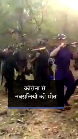 दक्षिण बस्तर में कोरोना से 10 से ज्यादा नक्सलियों की मौत, पुलिस का दावा- वे सुकमा में वैक्सीन और दवाएं भी मंगवा रहे - छत्तीसगढ़ - Dainik Bhaskar