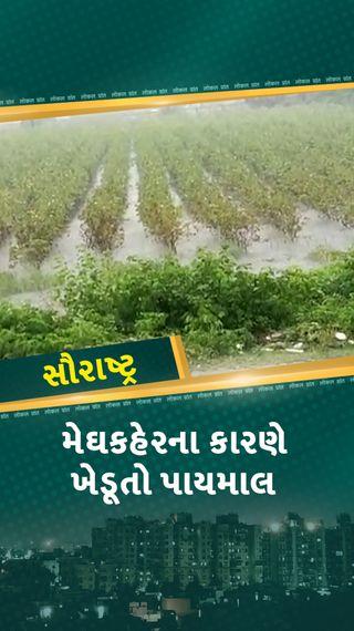 ગઢડા અને વીરપુરમાં ભારે પવન અને ગાજવીજ સાથે ધોધમાર વરસાદ, રસ્તા પર પાણી ભરાયા, ખેડૂતોની ચિંતામાં વધારો - રાજકોટ - Divya Bhaskar