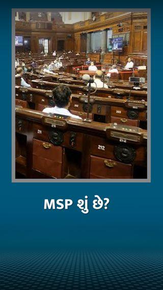 MSP શું છે, જેને લીધે ખેડૂતો રસ્તા પર આવીને સરકારના નવા નિયમોનો વિરોધ કરી રહ્યા છે? ખેડૂતો માટે MSPનું શું મહત્ત્વ છે? - ઓરિજિનલ - Divya Bhaskar