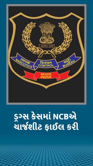 9 મહિના પછી NCBએ 30 હજાર પેજની ચાર્જશીટ ફાઇલ કરી, આ કેસમાં રિયા અને શોવિક સહિત 33 આરોપી - ઈન્ડિયા - Divya Bhaskar