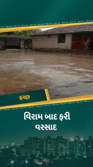 કચ્છ જિલ્લામાં બે દિવસના વિરામ બાદ ફરી કમોસમી વરસાદ, ભુજ-અંજાર અને ભચાઉમાં ભારે પવન અને કરાં સાથે વરસાદ - ભુજ - Divya Bhaskar