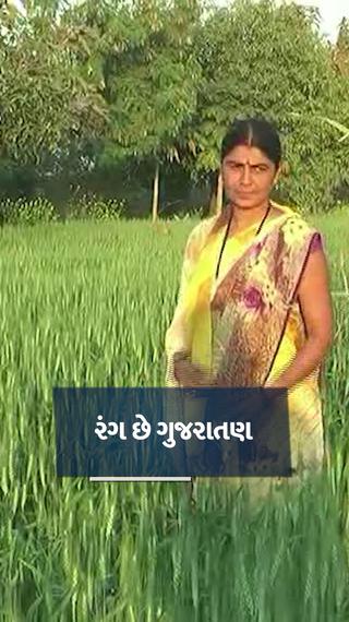 ગુજરાતના છેવાડાના સાગબારાની ધો-10 પાસ મહિલાએ 3 એકરમાં સજીવ ખેતી કરી 2 લાખની આવક મેળવી - ઓરિજિનલ - Divya Bhaskar