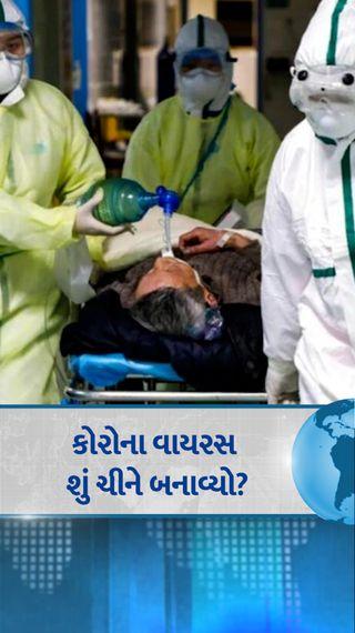 દુનિયાના મોટા વૈજ્ઞાનિકોએ કહ્યું- લેબમાંથી વાયરસ લીક થયાની થિયરીને ગંભીરતાથી લેવી જોઈએ, એને હમણાં નકારી શકાય એમ નહીં - વર્લ્ડ - Divya Bhaskar