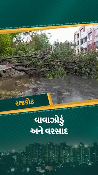 રાજકોટમાં તાઉ-તે વાવાઝોડાને કારણે વરસાદ સાથે ભારે પવન ફૂંકાતાં વીજપુરવઠો ખોરવાયો, વૃક્ષ ધરાશાયી, અનેક જગ્યાએ લાઇટ ડૂલ - રાજકોટ - Divya Bhaskar