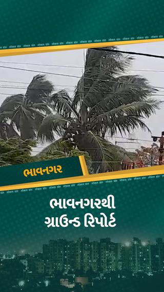 તાઉ-તે વાવાઝોડાના તાંડવથી અનેક રસ્તા બંધ, 500થી વધુ વૃક્ષો ધરાશાયી, 350 ગામો વીજ પુરવઠાથી વંચિત - ભાવનગર - Divya Bhaskar