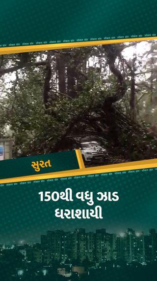 સુરતમાં વાવાઝોડાની અસરથી ભારે પવન ફૂંકાયો, 150થી વધુ ઝાડ પડ્યા, ભારે વરસાદથી જનજીવન ઠપ્પ - સુરત - Divya Bhaskar