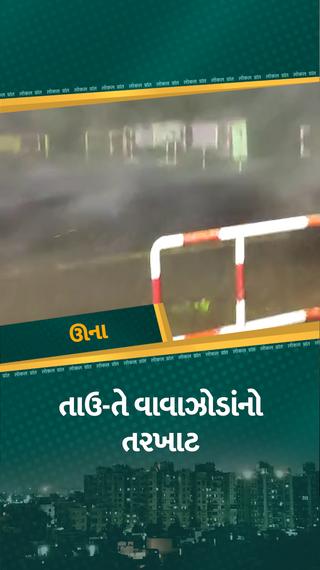 તાઉ-તેની પહેલી ઝલક તસવીરોમાં, જૂઓ વાવાઝોડાની તબાહી, ક્યાંક બાંધેલી બોટો ડૂબાડી તો ક્યાંક ટાવર તૂટ્યા - અમરેલી - Divya Bhaskar