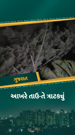 ગુજરાતને ઘમરોળી રહ્યું છે વાવાઝોડું, દીવથી પ્રવેશેલું વાવાઝોડું સૌરાષ્ટ્ર તરફ આગળ વધશે, ભારે વરસાદ, અનેક વૃક્ષો ધરાશાયી - અમરેલી - Divya Bhaskar