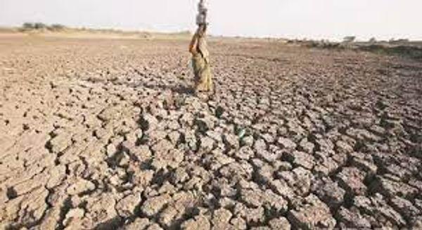 અપૂરતા જળસંચયને લીધે ગુજરાતમાં ભૂગર્ભ જળ પ્રતિ વર્ષ 3થી 5 મીટર ઊંડા જઈ રહ્યા છે.