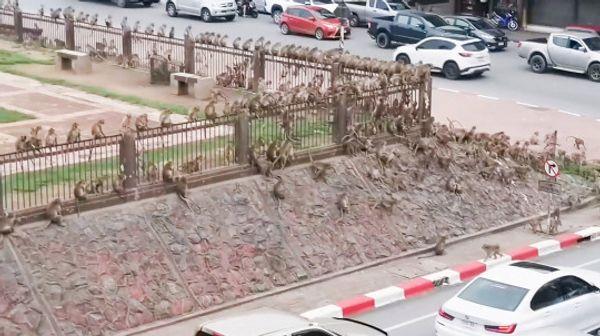 सड़क से गुजर रहे कार और बाइक पर सवार लोग जहां खड़े थे, वहीं रुके रह गए।