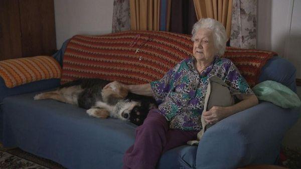 ડોરિસે કૂતરા લુલુને પોતાની મિત્ર માર્થ બર્ટનની દેખભાળ માટે છોડી દેવામાં આવ્યો છે