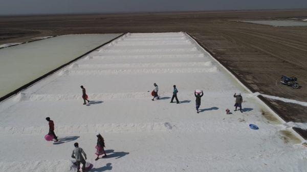 રણમાં મીઠું પકવતા અગરિયા પરિવારો