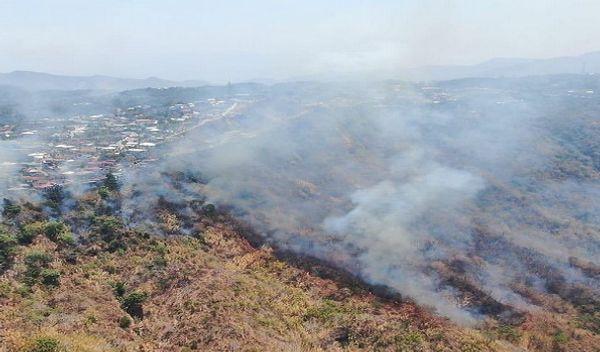 सोमवार को आग से पूरा जंगल धुंओं से भर गया था।