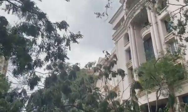 जितेंद्र-एकता कपूर के घर के बाहर गिरा बड़ा पेड़