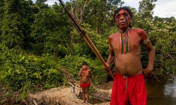 यानोमामी जनजाति के बारे में पहली बार 1940 में पता चला था।