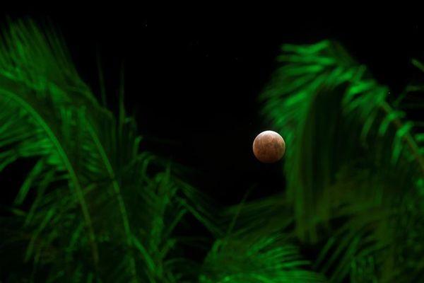 होनोलूलू, हवाई में चंद्र ग्रहण
