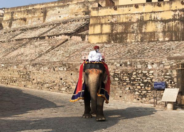 आमेर महल में पर्यटकों को घुमाकर लौटता हाथी।