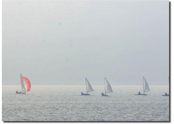 मध्य प्रदेश की राजधानी भोपाल में सुबह-सुबह घना कोहरा छा रहा है। फोटो यहां की बड़ी झील की है, जहां खिलाड़ी प्रतियोगिता की तैयारी कर रहे हैं।