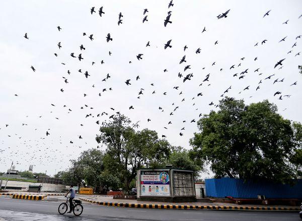 दिल्ली में मंगलवार को दिन भर बादल छाए रहे। बुधवार को यहां भारी बारिश हो सकती है।