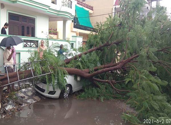 जयपुर के महेश नगर इलाके में तेज हवाएं चलने से कार के ऊपर पेड़ गिर गया।